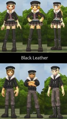 b2ap3_thumbnail_Black-Leather_20121216-073314_1.jpg