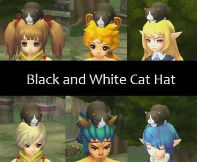 b2ap3_thumbnail_Black-and-White-Cat-Hat_20121216-083124_1.jpg