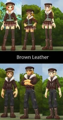 b2ap3_thumbnail_Brown-Leather_20121216-073318_1.jpg