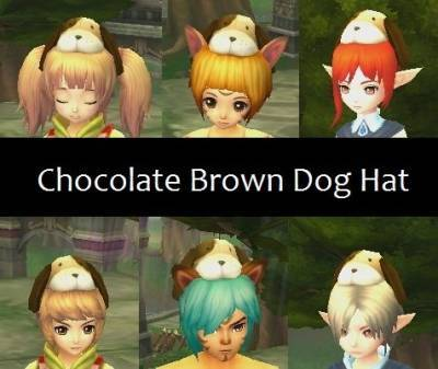 b2ap3_thumbnail_Chocolate-Brown-Dog-Hat_20121216-083125_1.jpg