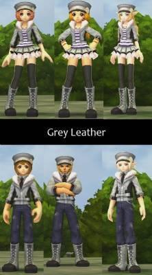 b2ap3_thumbnail_Grey-Leather_20121216-073424_1.jpg