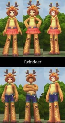 b2ap3_thumbnail_Reindeer_20121216-073454_1.jpg