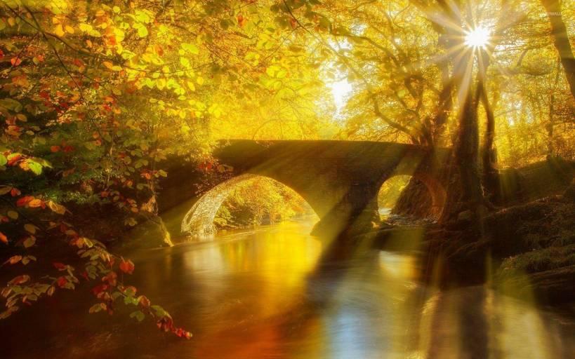 stone-bridge-in-an-golden-forest-46854-1920x1200